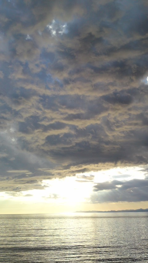 感情の嵐画像