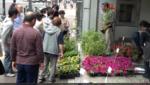土と苗のサービスデー 四谷2丁目発展会 動画