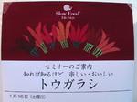 トウガラシ展 2010.01 動画